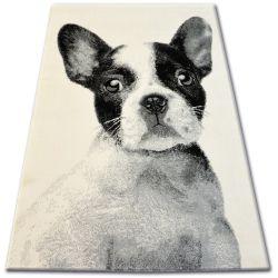 Teppich BCF FLASH 33327/160 - Französisch Bulldog